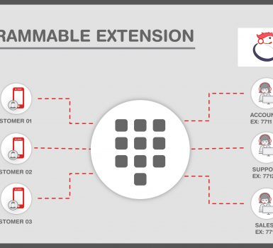 programmable extension